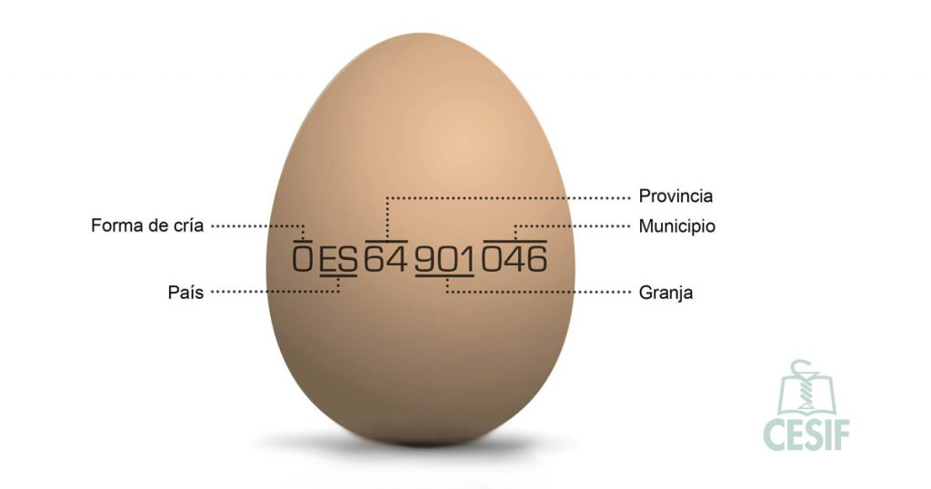 calidad huevo seguridad alimentaria